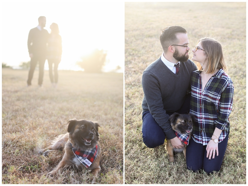 Puppy in engagement session