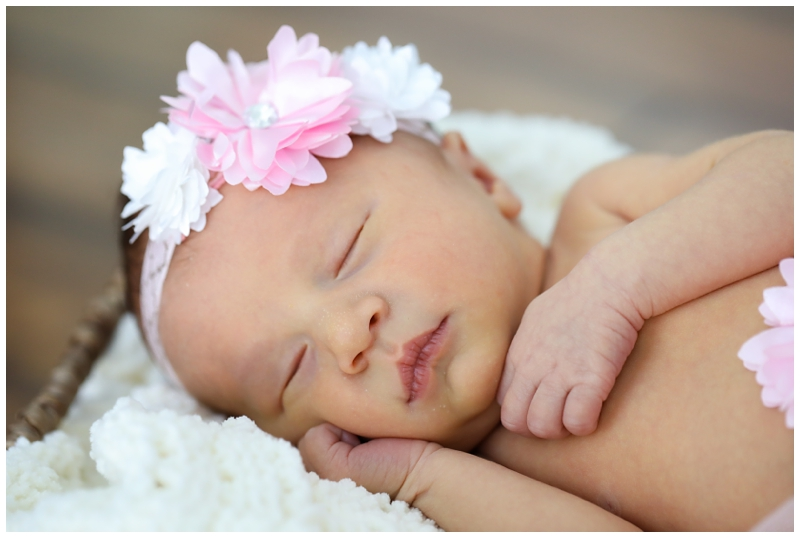 Tampa Newborn Girl Photos