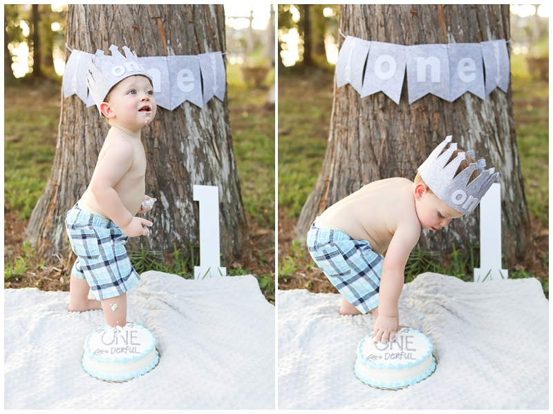 Tampa First Birthday cake smash