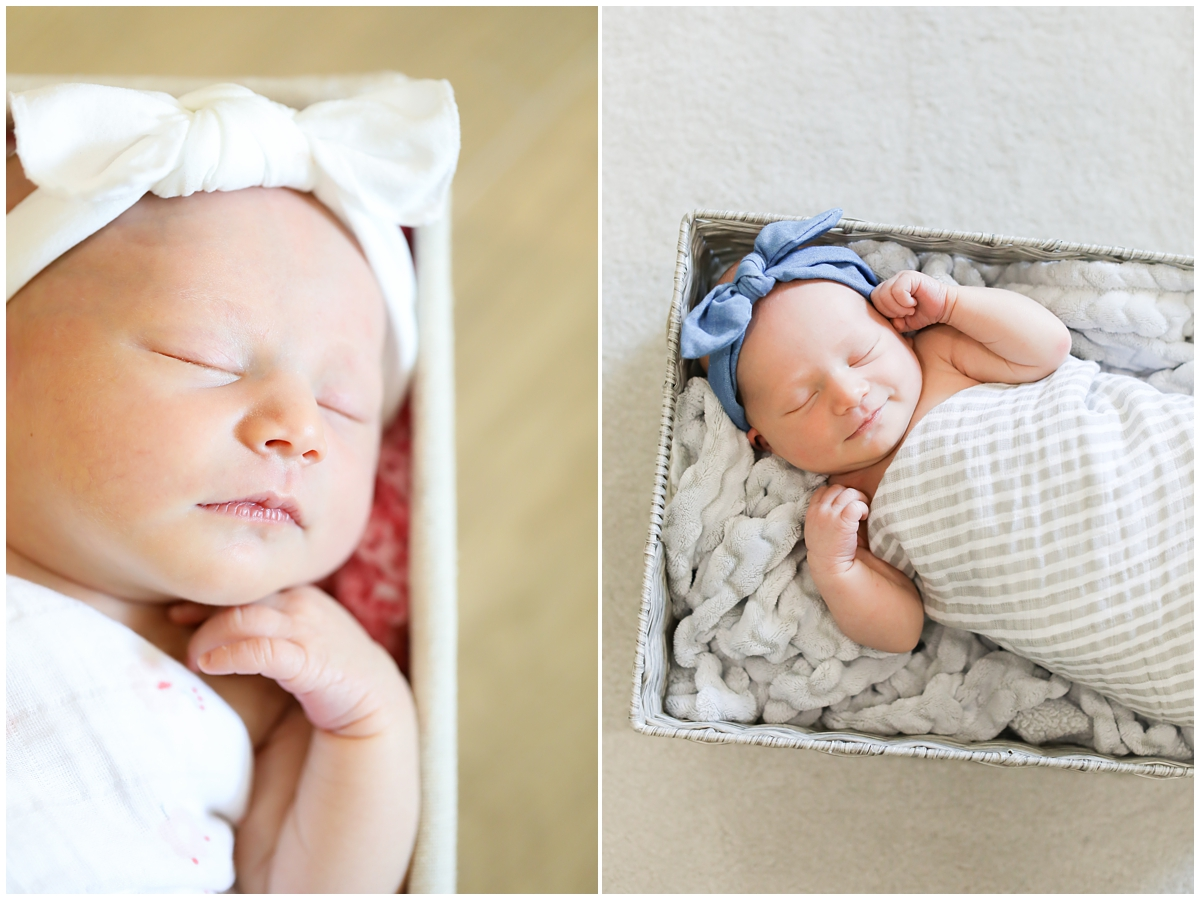 South Tampa Newborn Photography