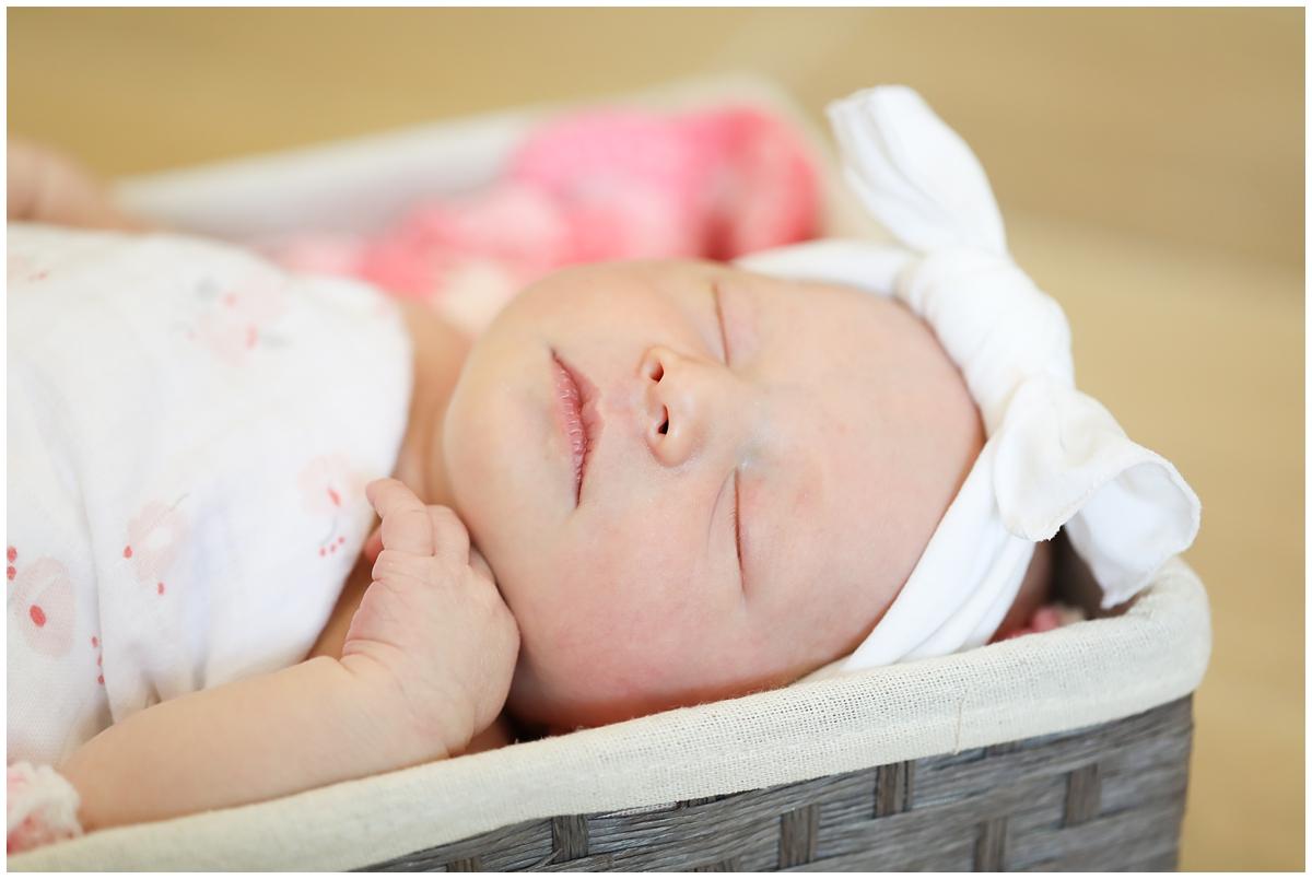 Tampa Newborn Photography