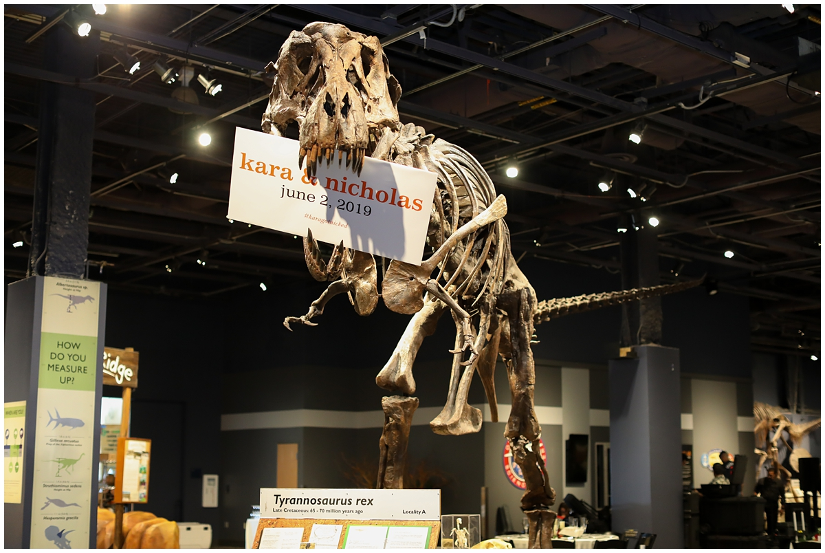 Orlando Science Center Dino Digs Reception