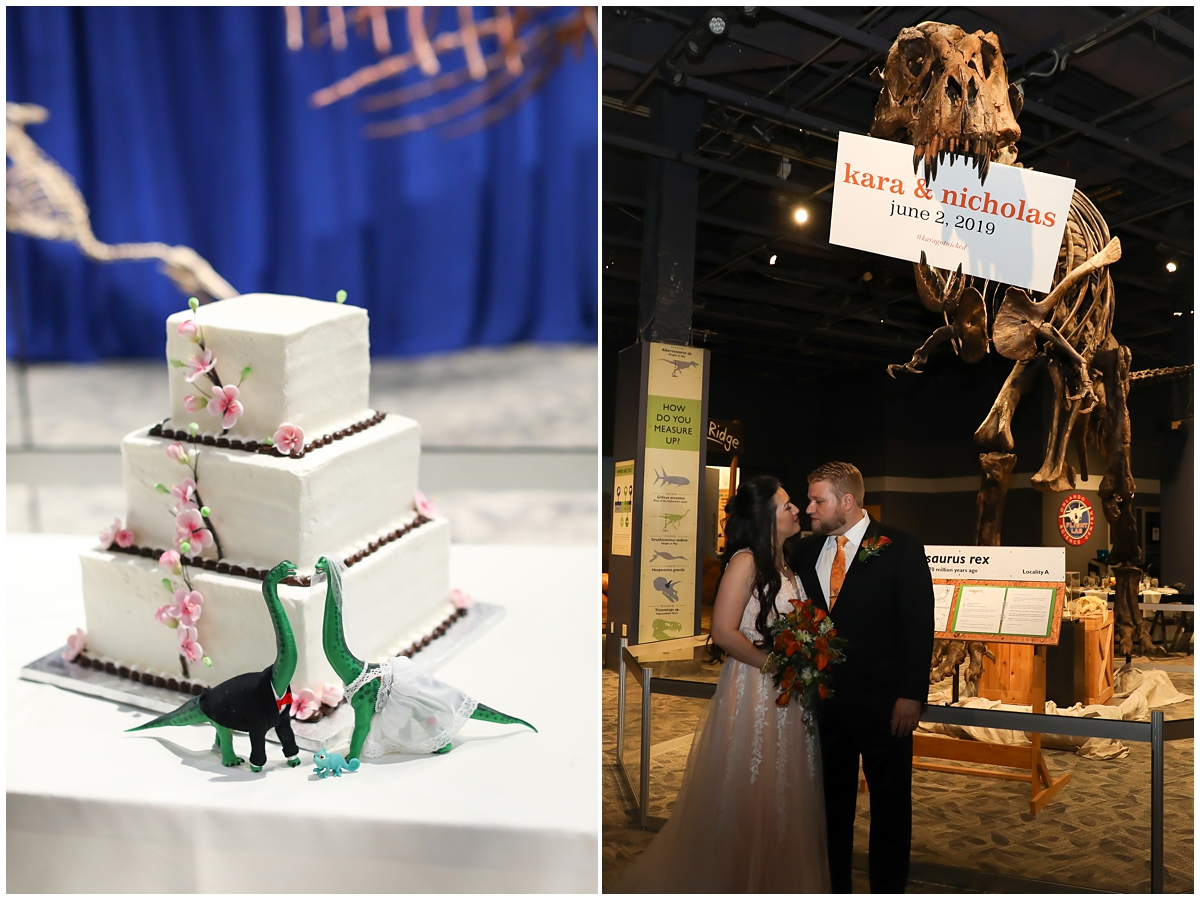 Publix Wedding Cake Dinosaur theme