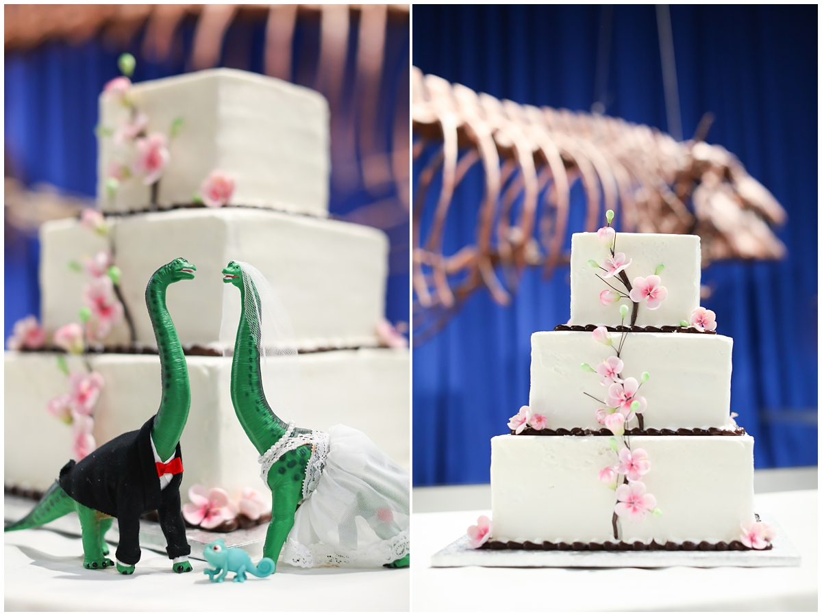 Publix Wedding Cake Dinosaur Topper