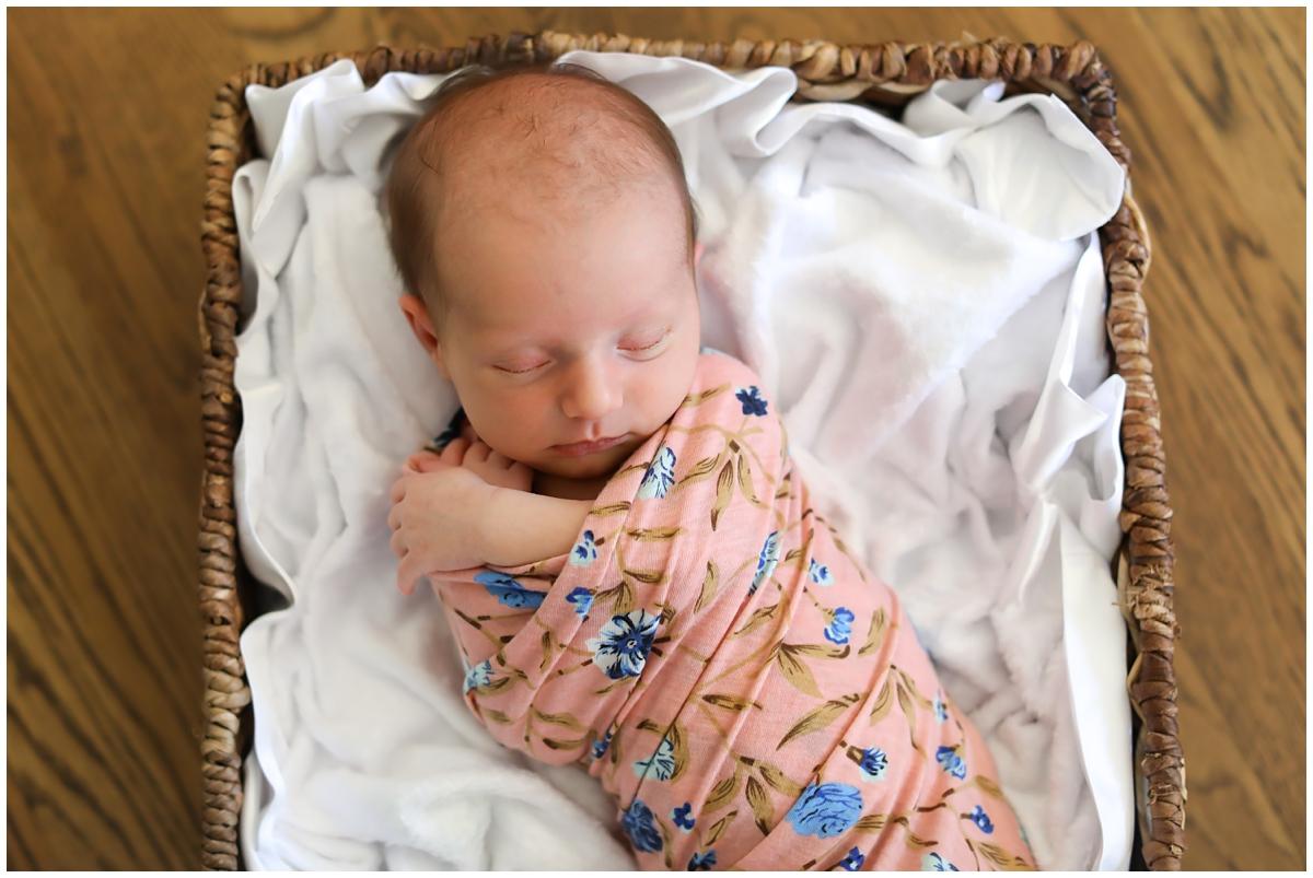 Baby girl newborn photos in basket
