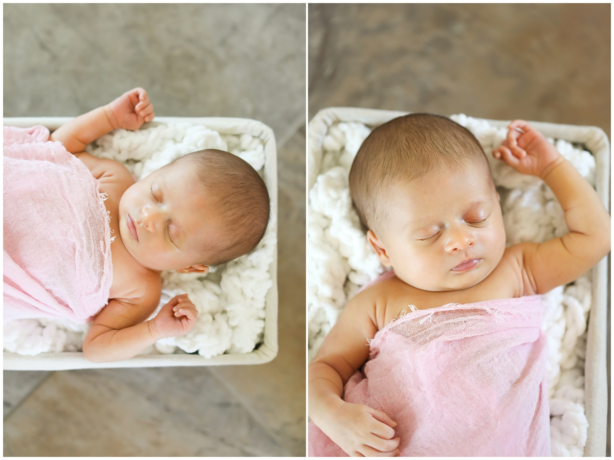 Newborn baby basket Tampa photographer