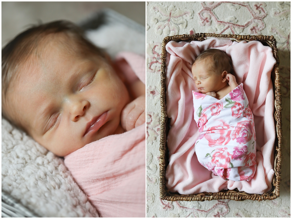 Westchase newborn photography